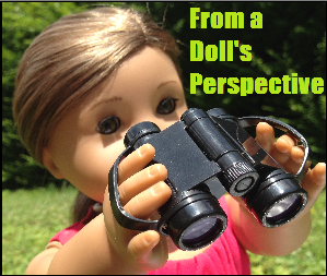 From a Doll's Perspective.png